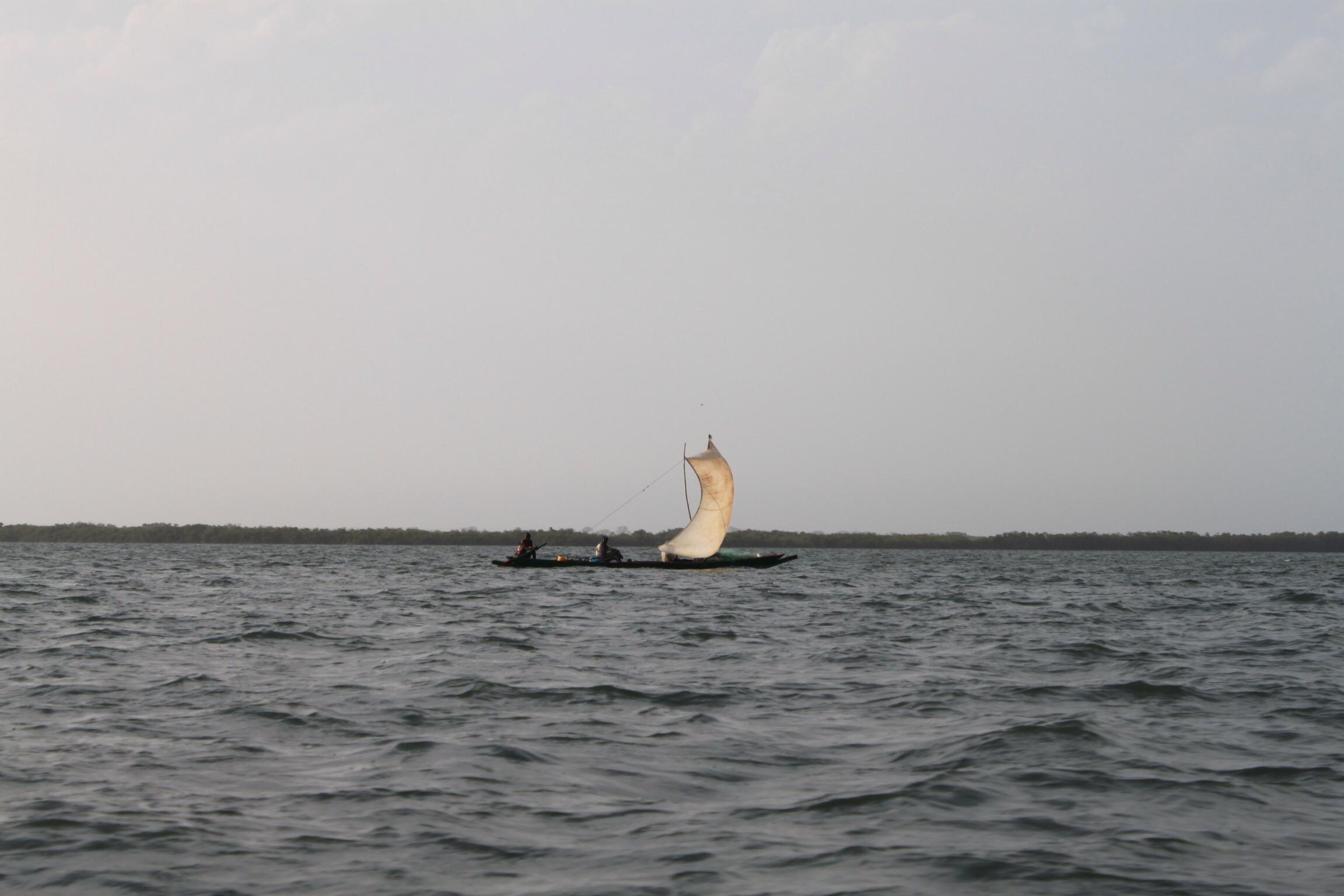 loin là bas dans le détroit du Sénégal